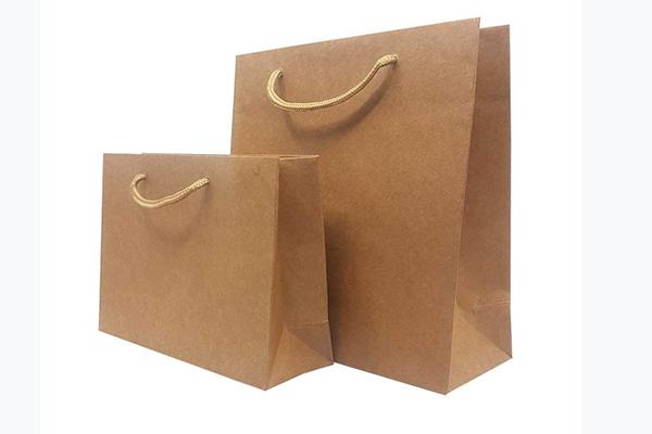 عرضه نمونه های مختلف پاکت کرافت فست فود